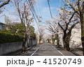 東京散歩、世田谷お花見散歩、深沢七丁目付近 41520749