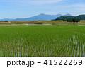 田んぼ 田園 風景の写真 41522269
