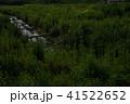 蛍 光 昆虫の写真 41522652