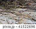 竜王峡の石、地層 41522696