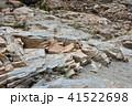 龍王峡の石、地層 41522698