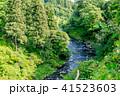 渓流イメージ 41523603