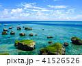 海 宮古島 津波岩の写真 41526526