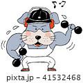 犬のフィットネス 41532468