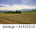 浅間山 火山 キャベツの写真 41533313