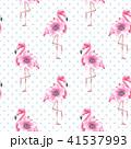 フラミンゴ 熱帯 鳥のイラスト 41537993