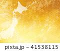 日本地図 41538115