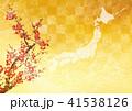 日本地図 41538126