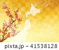 日本地図 41538128