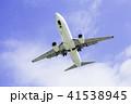 着陸する飛行機  ボーイング737-800 41538945