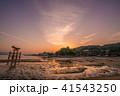 宮島の夜明け 41543250