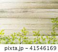 葉 木目 エコイメージのイラスト 41546169