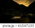 ホタル ゲンジボタル 川の写真 41547135