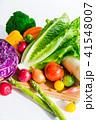 野菜 生野菜 緑黄色野菜の写真 41548007