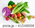 野菜 生野菜 緑黄色野菜の写真 41548008