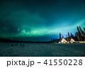 《カナダ ノースウエスト準州》イエローナイフ ティッピーとオーロラ 41550228