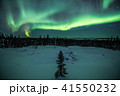 イエローナイフ オーロラ 夜景の写真 41550232