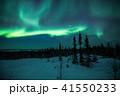 《カナダ ノースウエスト準州》 イエローナイフ オーロラ  41550233