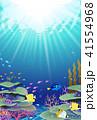 海の中の風景 珊瑚礁 サンゴ礁 41554968