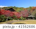 京都 秋の大山崎山荘美術館 41562686