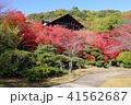 京都 秋の大山崎山荘美術館 41562687