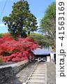京都 秋の宝積寺 41563169