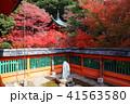 京都 秋の毘沙門堂 41563580