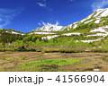 栂池自然園 41566904
