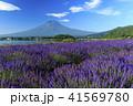 富士山 ラベンダー 41569780