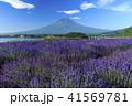 富士山 ラベンダー 41569781