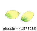 レモン 41573235