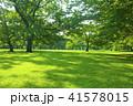 公園 野原 芝生の写真 41578015
