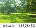 公園 芝生 木陰の写真 41578433