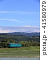 列車 電車 和歌山線の写真 41580979