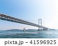 大鳴門橋 41596925