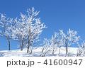 雪景色 冬 霧氷の写真 41600947