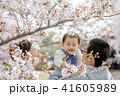 家族 春 桜の写真 41605989