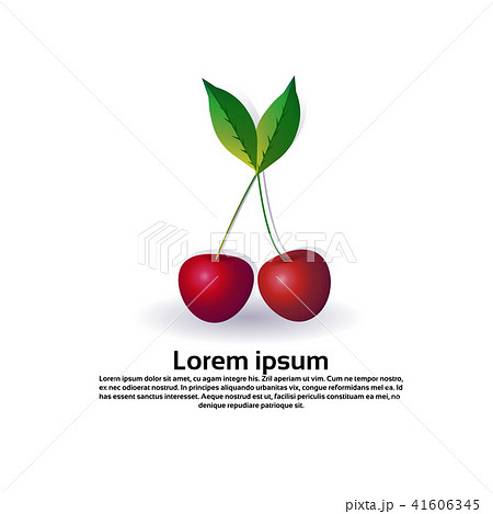 cherry fruit on white background, healthy lifestyle or diet concept, logo for fresh fruits copy 41606345
