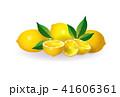 くだもの フルーツ 実のイラスト 41606361