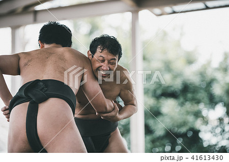 Sumo wrestling 41613430