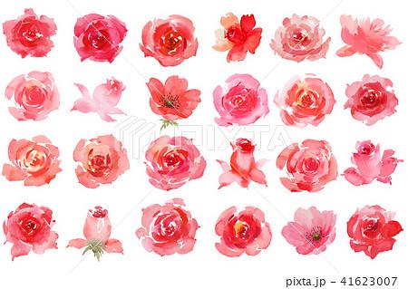 薔薇素材のイラスト素材