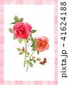 花 バラ 水彩のイラスト 41624188