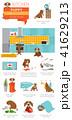 インフォグラフィック こいぬ 仔犬のイラスト 41629213