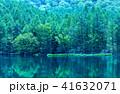 御射鹿池 新緑 蓼科高原の写真 41632071