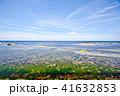 海 青空 風景の写真 41632853