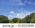 秋 空 青空の写真 41632896