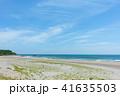ロングビーチ 砂浜 ビーチの写真 41635503