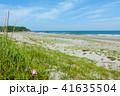 ロングビーチ 砂浜 ビーチの写真 41635504