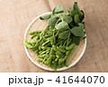 枝豆 41644070