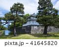 二条城 外濠 西南隅櫓の写真 41645820